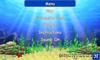 Beach Ball Crab Mayhem