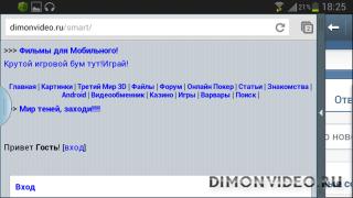 Слушаем FLASH и одновременно лазим в интернете на SAMSUNG S3
