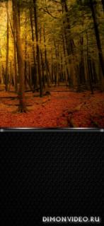 Walls Autumn 1080x2340