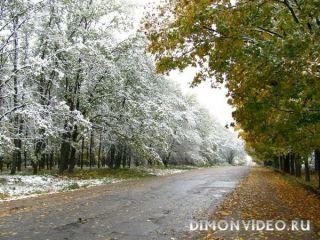 Осень и Зима встретились