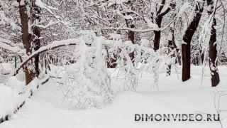 Зима Московская