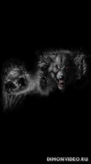 Werewolf 1080x1920, 1080x2160, 1080x2220, 1080x2340