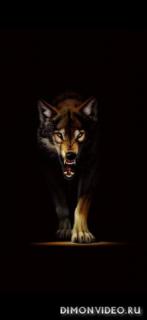 Black Wolf 1080x2340