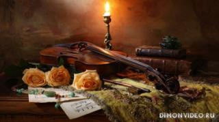 skripka-svecha-knigi-rozy