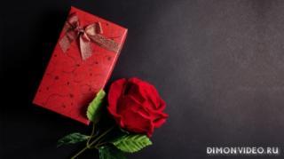 tsvetok-podarok-roza