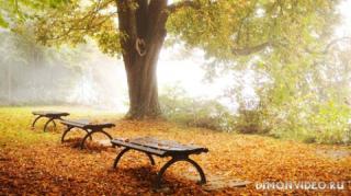 Autumn_wallpapers_003