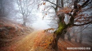 Autumn_wallpapers_006