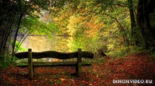 Autumn_wallpapers_018