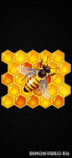 Bee 1080x2340