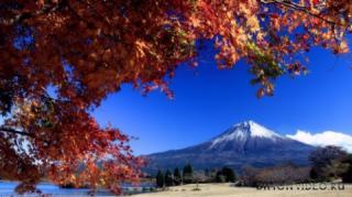 Autumn_wallpapers_01