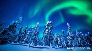 zima-sneg-el-priroda-siyanie