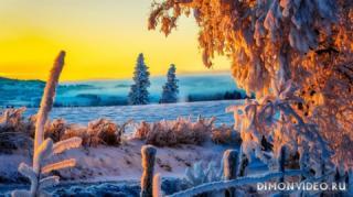 zima-rassvet-krasota