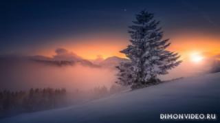 noch-zima-priroda