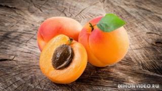 abrikosy-frukty-lakomstvo