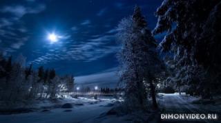 zima-noch-derevia-doroga-most