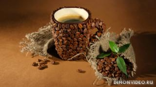 coffee-leaves-cup