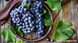 vinograd-krasnyy-listya