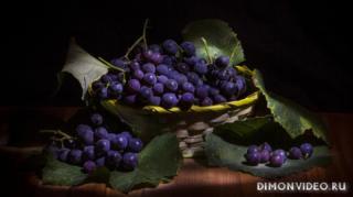 vinograd-makro-fon