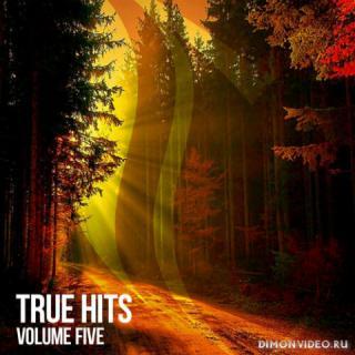 VA - True Hits Vol. 5 (2020)