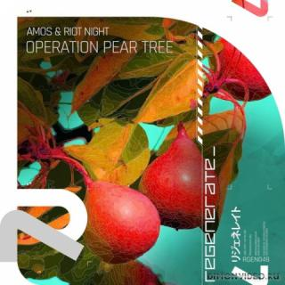 Amos & Riot Night - Operation Pear Tree (Extended Mix)