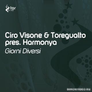Ciro Visone & Toregualto pres. Harmonya - Giorni Diversi (Original Mix)