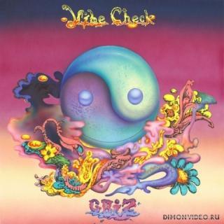 GRiZ - Vibe Check (Original Mix)