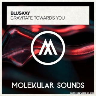BluSkay - Gravitate Towards You (Extended Mix)