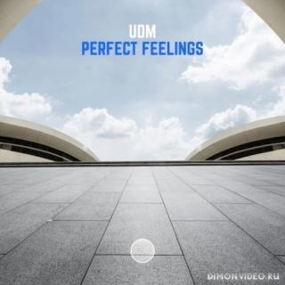 UDM - Perfect Feelings (Extended Mix)