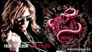 Whitesnake   -  Hey you... You make me rock