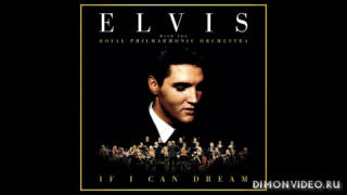 Elvis Presley - There