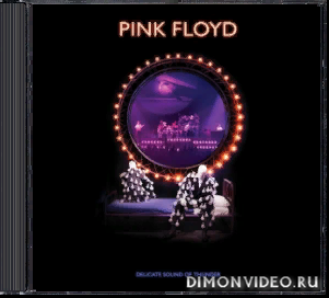 Pink Floyd - Delicate Sound of Thunder (2019 Remix) (Live) (2CD) (2020)