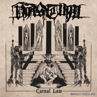 Vastum - Carnal Law (2011)