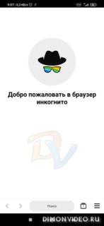 Incognito Browser Pro -полноценный частный браузер