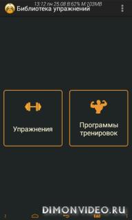Упражнения для зала