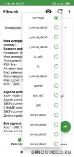 Ethwork: Netstat и Сетевые Интерфейсы