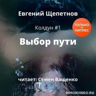 Выбор пути - Евгений Щепетнов