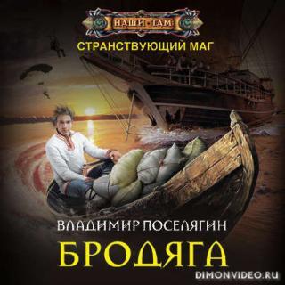 Бродяга – Владимир Поселягин