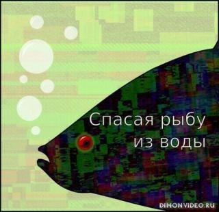 Спасая рыбу из воды - Егор Балашов