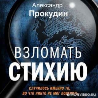 Взломать стихию - Александр Прокудин