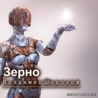 Зерно - Владимир Шорохов