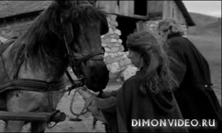 Туринская лошадь