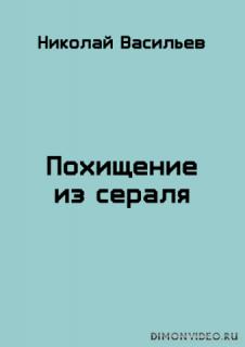 Похищение из сераля - Николай Васильев