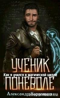 Как я учился в магической школе. Дилогия - Александр Курзанцев