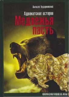 Медвежья пасть. Адвокатские истории - Алексей Ходорковский