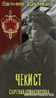 Секретная командировка - Евгений Шалашов