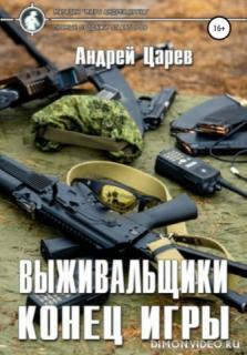 Конец игры - Андрей Царев