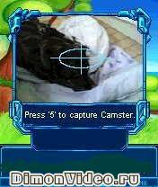 Camster