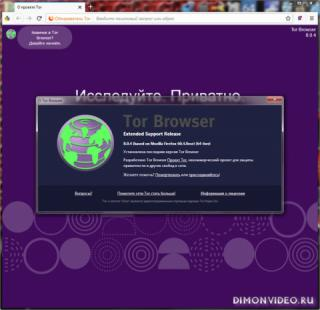 Tor Browser Bundle 8.0.4