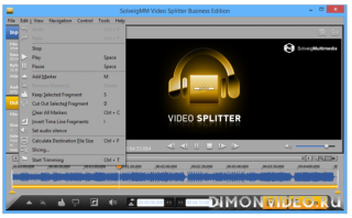 SolveigMM Video Splitter Business Edition