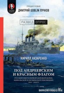Под Андреевским и Красным флагом - Дмитрий Пучков, Кирилл Назаренко